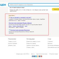 Контекстная реклама Яндекс Директ на сайте